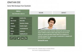 Free website templates | andreasviklund com
