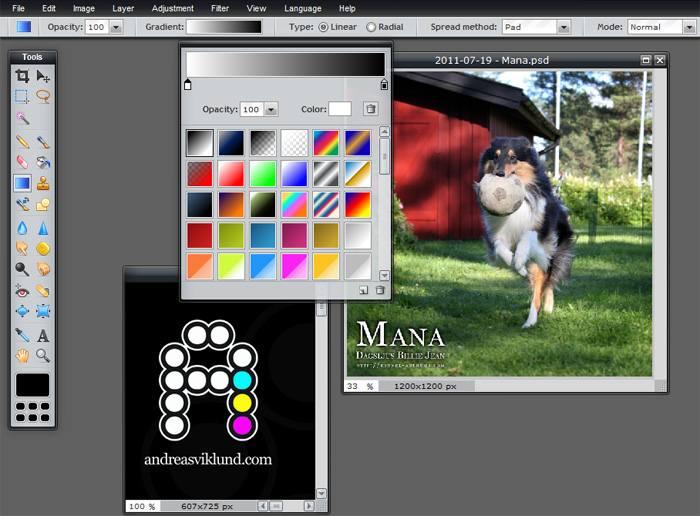 Best Free Digital Paint Software